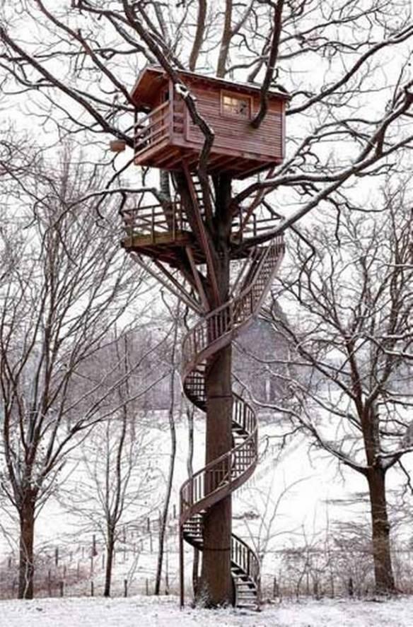 treehouse_thfoin